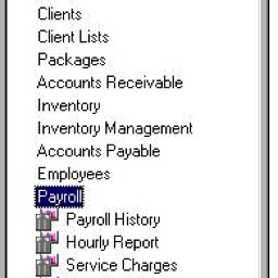 edge reports payroll